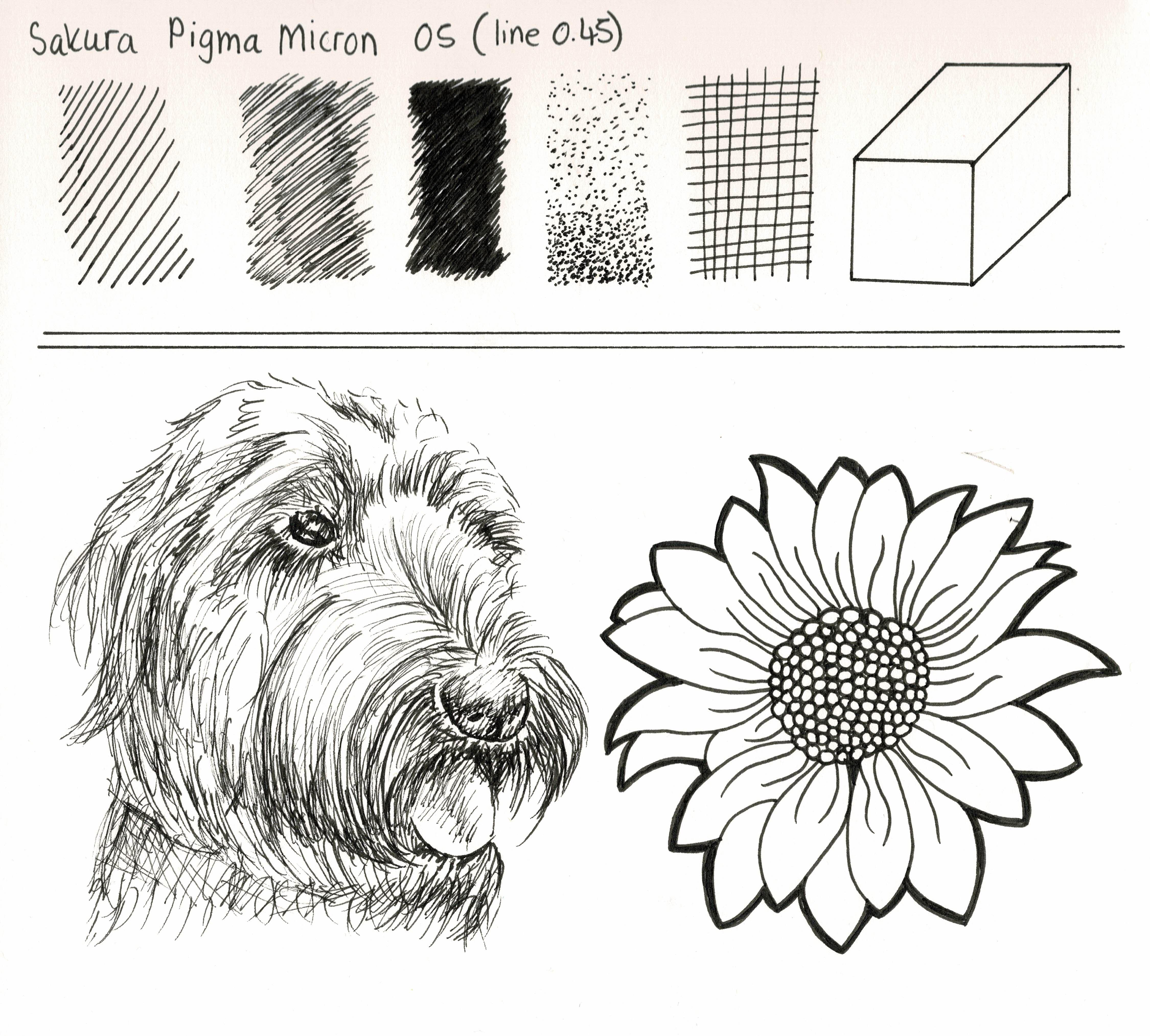 Drawing With Sakura Pigma Micron Fineliners