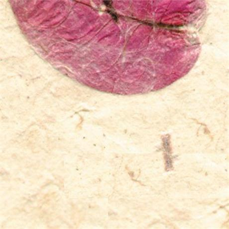 Handmade Bhonswaa Flower Paper 51x76cm 65gsm Image 1