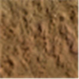 Caran d'Ache Pastel Pencil 047 Bistre thumbnail