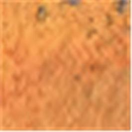 Caran d'Ache Pastel Pencil 052 Saffron thumbnail