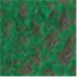 Caran d'Ache Pastel Pencil 225 Moss Green thumbnail