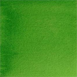 Daniel Smith Watercolour Hookers Green 5ml S1 thumbnail