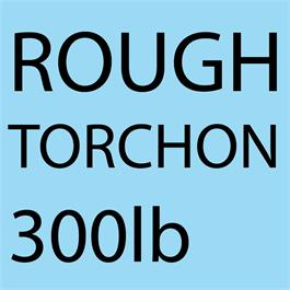 "Canson Heritage Sheet Rough 640gsm (300lb) 22x32"" (56x76cm) thumbnail"