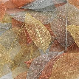 Skeleton Leaves 40 Pack - Metallic Colours thumbnail