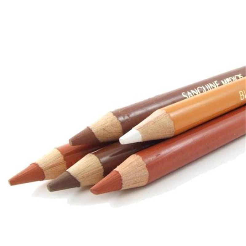 Sanguine Medicis /& XVIII c Sepia White Conte Artists Drawing Pencils Sanguine
